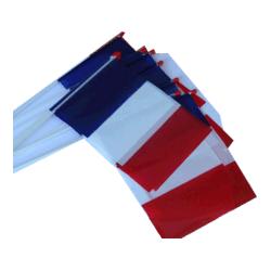 drapeau-plastique-france